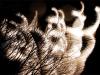 silver-spirals